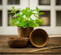 Jakie zioła lubi wątroba? Najlepsze zioła na wątrobę
