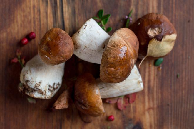Jakie grzyby nadają się do pasteryzowania? Jak pasteryzować grzyby?
